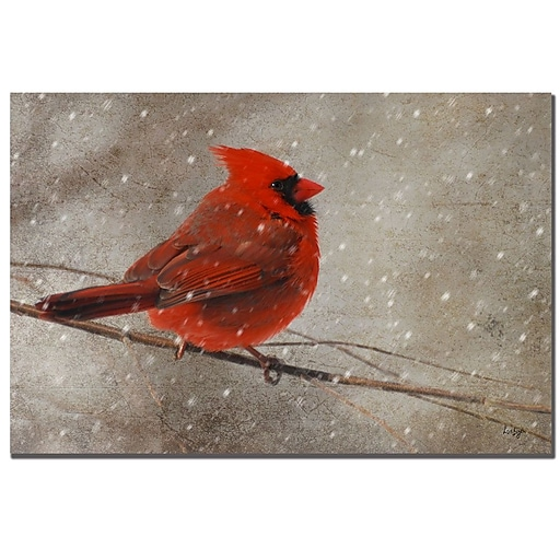 Trademark Fine Art Lois Bryan 'Cardinal in Winter' Canvas Art 16x24 Inches