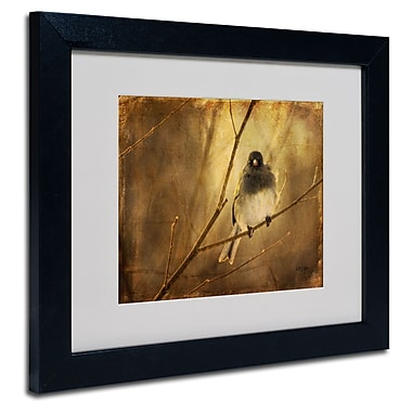Trademark Fine Art Lois Bryan 'Backlit Birdie Being Buffeted' Matted Art Black Frame 16x20 Inches