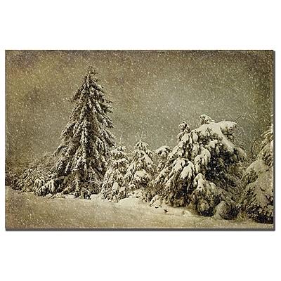 Trademark Fine Art Lois Bryan 'Winter's Wrath with Snow' Canvas Art 16x24 Inches