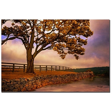 Trademark Fine Art Lois Bryan 'One Tree Hill' Canvas Art 16x24 Inches