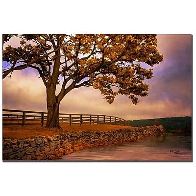 Trademark Fine Art Lois Bryan 'One Tree Hill' Canvas Art 22x32 Inches