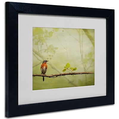 Trademark Fine Art Lois Bryan 'Bluebird in Spring' Matted Art Black Frame 16x20 Inches