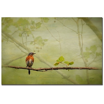 Trademark Fine Art Lois Bryan 'Bluebird in Spring' Canvas Art 22x32 Inches