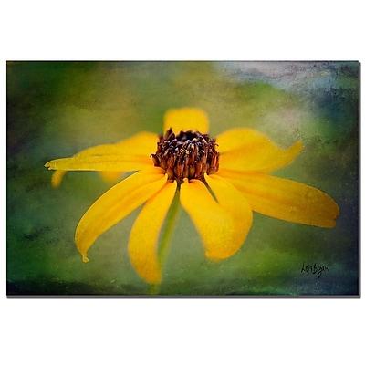 Trademark Fine Art Lois Bryan 'Textured Black-eyed Susan' Canvas Art 16x24 Inches