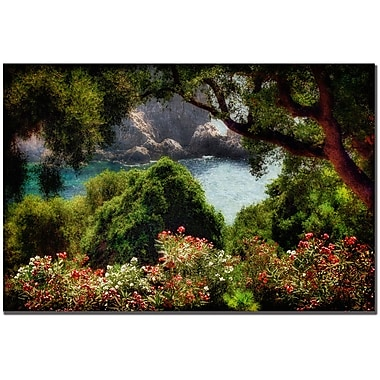 Trademark Fine Art Lois Bryan 'Water Plain' Canvas Art