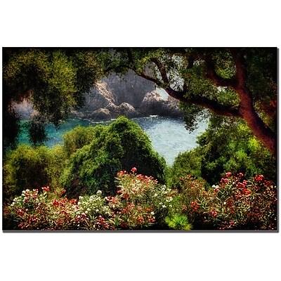 Trademark Fine Art Lois Bryan 'Water Plain' Canvas Art 16x24 Inches
