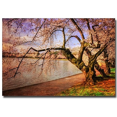 Trademark Fine Art Lois Bryan 'At the Cherry Blossom Festival' Canvas Art 30x47 Inches