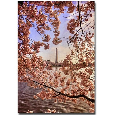 Trademark Fine Art Lois Bryan 'Cherry Blossoms and Washington Monument' Canvas 30x47 Inches