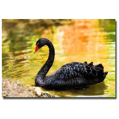 Trademark Fine Art Lois Bryan 'On the Golden Pond' Canvas Art 22x32 Inches
