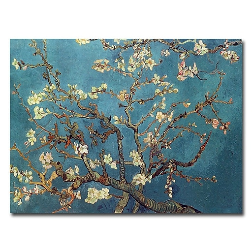 Trademark Fine Art Vincent van Gogh 'Almond Blossoms' Canvas Art 24x32 Inches