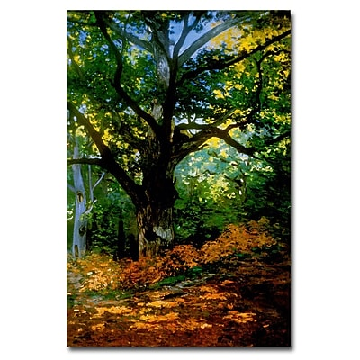 Trademark Fine Art Claude Monet, 'Bodmer Oak, Fontainebleau Forest' Canvas Art 16x24 Inches