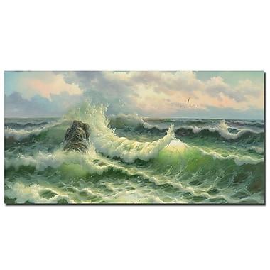 Trademark Fine Art Rio 'Waves II' Canvas Art 24x47 Inches