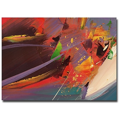 Trademark Fine Art Ricardo Tapia 'Splash' Canvas Art 24x32 Inches