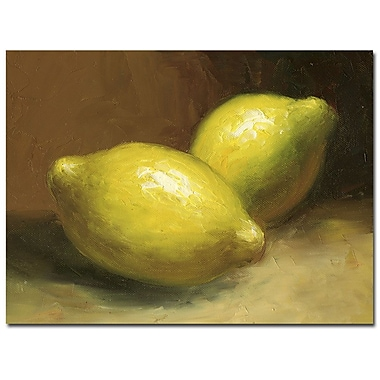 Trademark Fine Art 'Lemons' Canvas Art 35x47 Inches