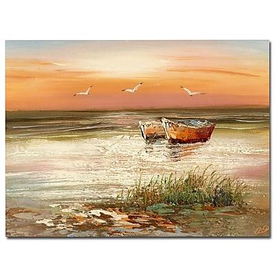 Trademark Fine Art Rio 'Florida Sunset' Canvas Art 35x47 Inches