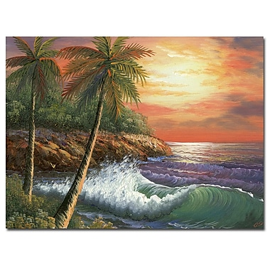 Trademark Fine Art Rio 'Maui Sunset' Canvas Art 35x47 Inches