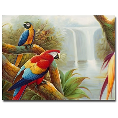 Trademark Fine Art Rio 'Amazon Waterfall' Canvas Art 26x32 Inches