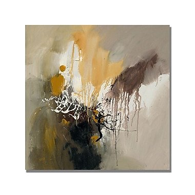 Trademark Fine Art Rio 'Abstract I' Canvas Art 35x35 Inches