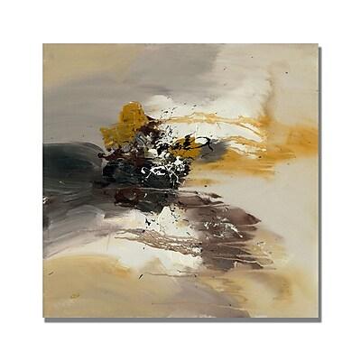 Trademark Fine Art Rio 'Abstract II' Canvas Art 18x18 Inches