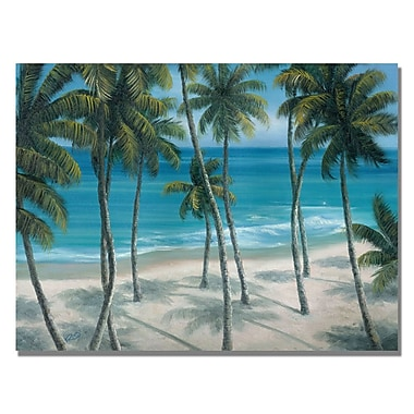 Trademark Fine Art Rio 'Barbados Palms' Canvas Art 35x47 Inches