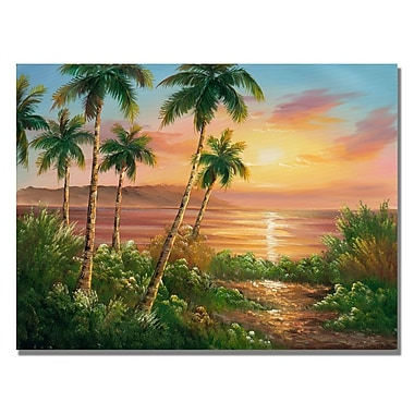 Trademark Fine Art Rio 'Pacific Sunset' Canvas Art 18x24 Inches