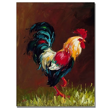 Trademark Fine Art Rio 'Rooster' Canvas Art 26x32 Inches