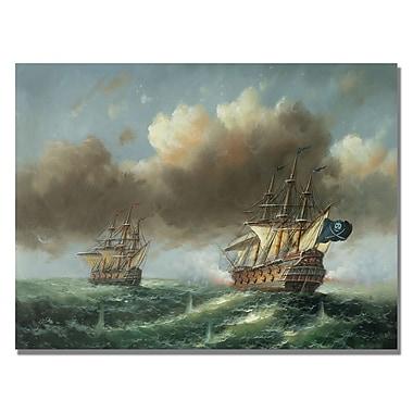 Trademark Fine Art Rio 'The Revenge' Canvas Art 35x47 Inches