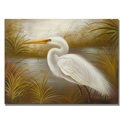 Trademark Fine Art Rio 'White Heron' Canvas Art 18x24 Inches