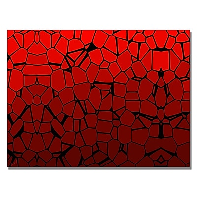 Trademark Fine Art 'Crystal Reds' Canvas Art 22x32 Inches