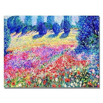 Trademark Fine Art Manor Shadian 'Poppies' Canvas Art 22x32 Inches