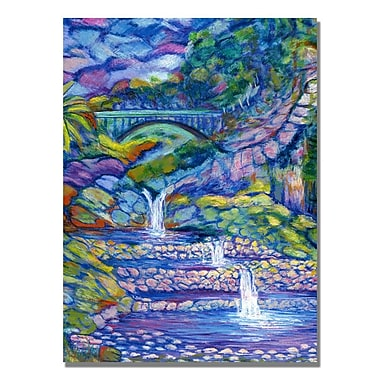 Trademark Fine Art Manor Shadian 'Seven Pools' Canvas Art 18x24 Inches