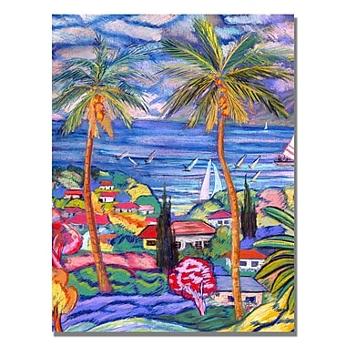 Trademark Fine Art Manor Shadian 'Maui Surf' Canvas Art.