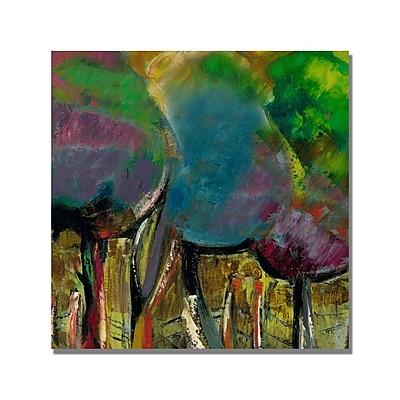 Trademark Fine Art 'Boyer Manzano de Noche' Canvas Art