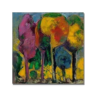 Trademark Fine Art 'Boyer Purple Sky' Canvas Art