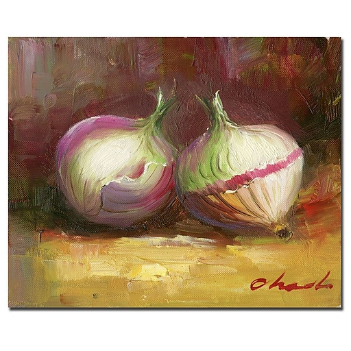 Trademark Fine Art 'Onion Still Life' Canvas Art 26x32 Inches
