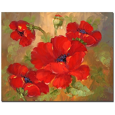 Trademark Fine Art 'Poppies' Canvas Art 26x32 Inches