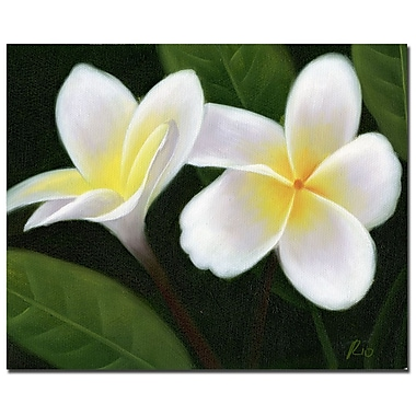 Trademark Fine Art Hawaiian Lei Flowers' Canvas Art Readu to Hang 35x47 Inches
