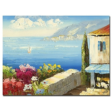 Trademark Fine Art Rio 'Mideterreanean Cottage' Canvas Art 35x47 Inches