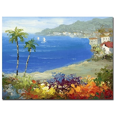 Trademark Fine Art Rio 'Mideterreanean Beach' Canvas Art 35x47 Inches