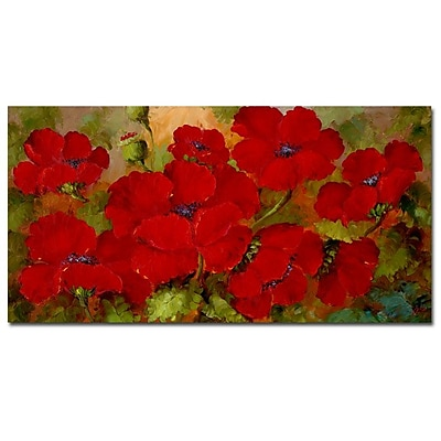 Trademark Fine Art Rio 'Poppies' Canvas Art 12x24 Inches