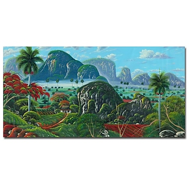 Trademark Fine Art Douglas 'Paisage Tropical' Canvas Art