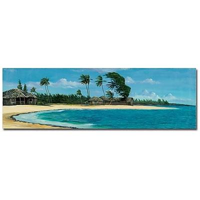 Trademark Fine Art Douglas 'Paisage Tropical II' Canvas Art