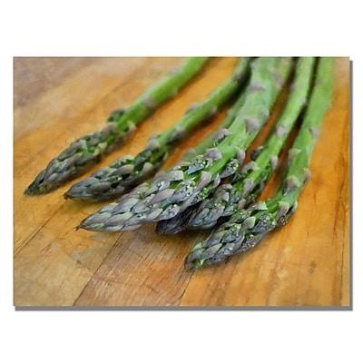 Trademark Fine Art Michelle Calkins 'Asparagus' Canvas Art 35x47 Inches