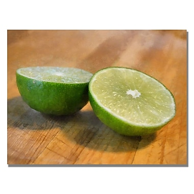 Trademark Fine Art Michelle Calkins 'Limes' Canvas Art 22x32 Inches