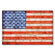 Trademark Fine Art Michelle Calkins 'American Flag with States' Canvas Art 16x24 Inches