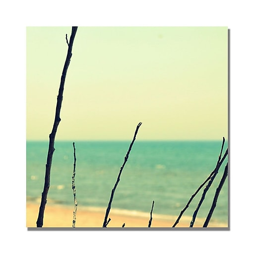 Trademark Fine Art Michelle Calkins 'Branches on the Beach' Canvas Art 18x18 Inches