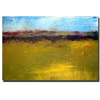 Trademark Fine Art Michelle Calkins 'Abstract Landscape Highway Series 14x19 Inches