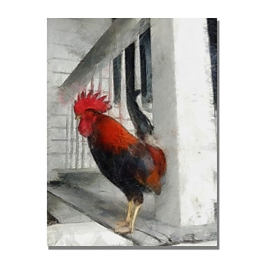 Trademark Fine Art Michelle Calkins 'Key West Rooster' Canvas Art
