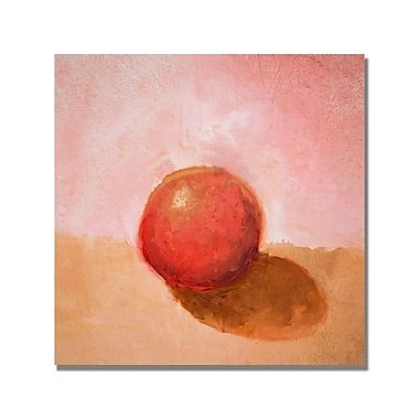 Trademark Fine Art Michelle Calkins 'Red Sphere Still Life' Canvas Art