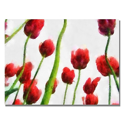Trademark Fine Art Michelle Calkins 'Red Tulips from Bottom Up III' Canvas Art